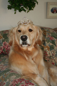The princess is queen for the day!