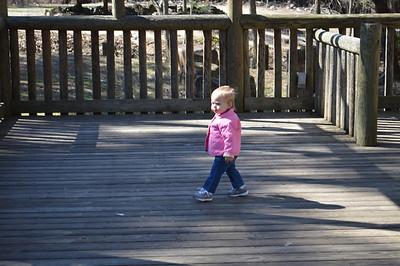 Zoo February 2014