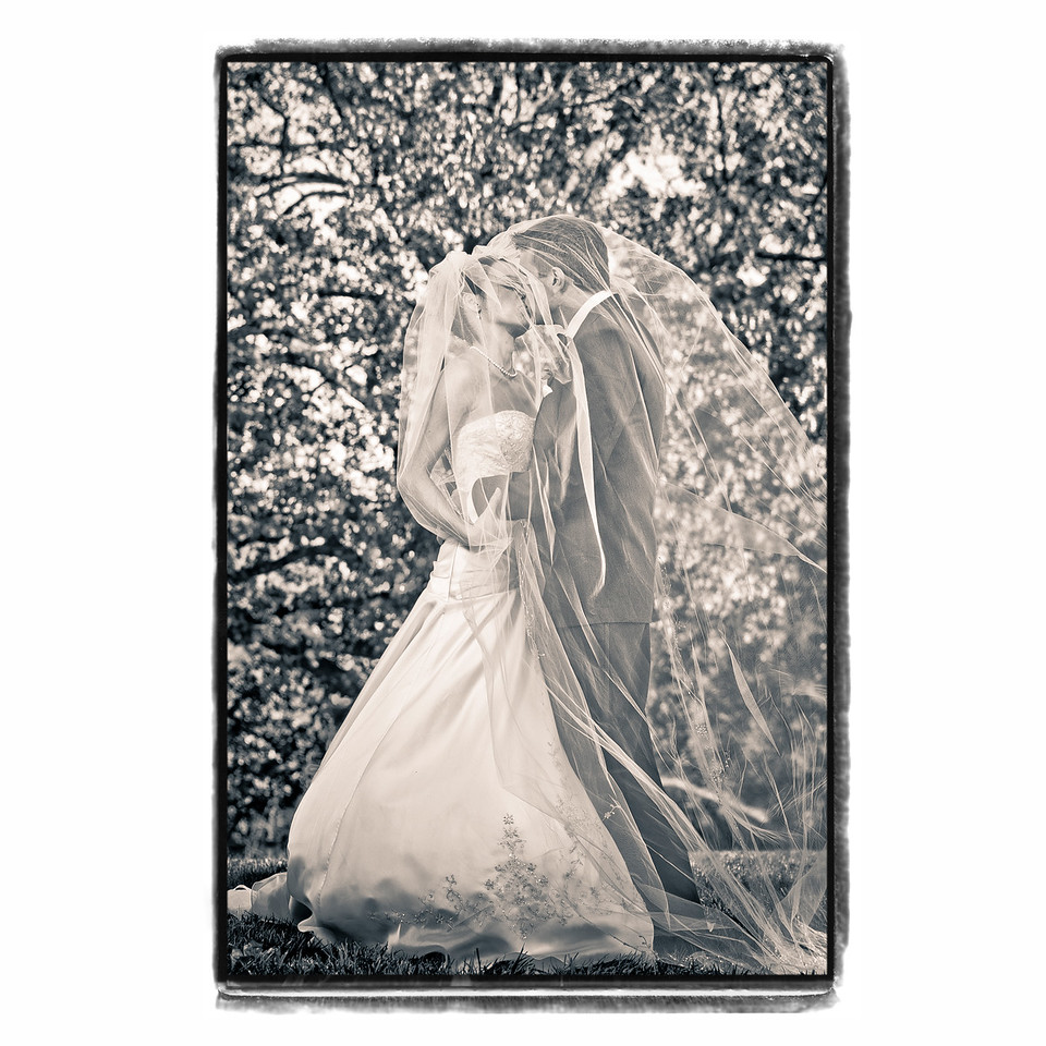 10x10 book page hard cover-001