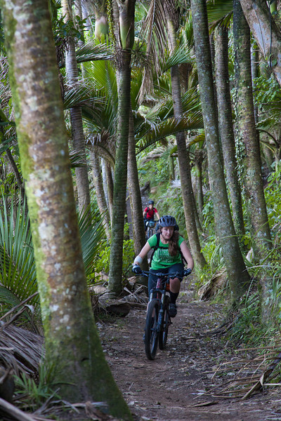 Kate in the nikau corridor
