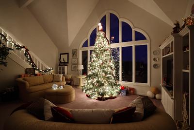 Christmas Tree Photography Tips