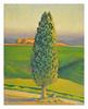 green field 2005
