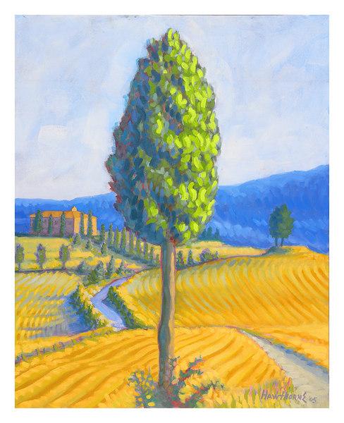 yellow field 2005