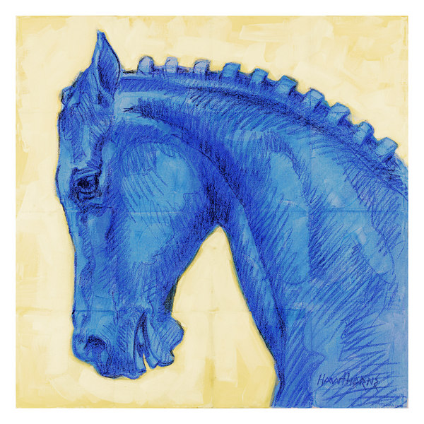blue horse with braids 2005