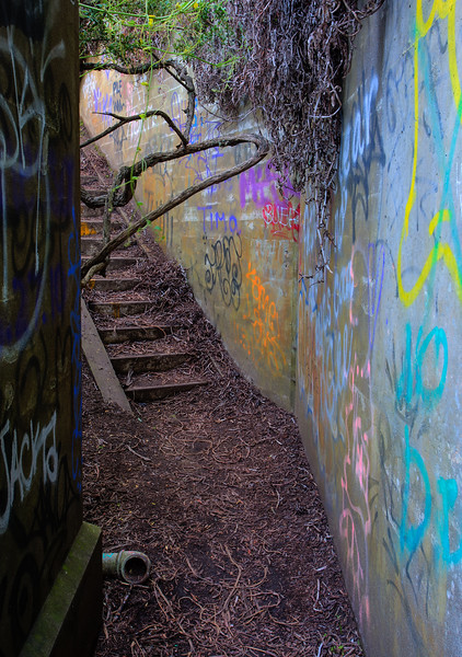 The Stairway 4528