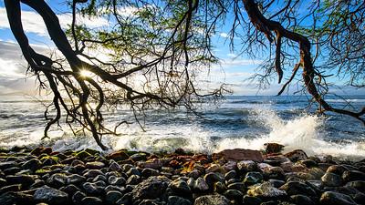 Mala Maui 1
