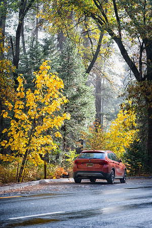 Yosemite Fall Colors BMW-3