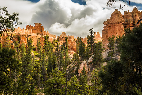 Bryce National Park, Utah