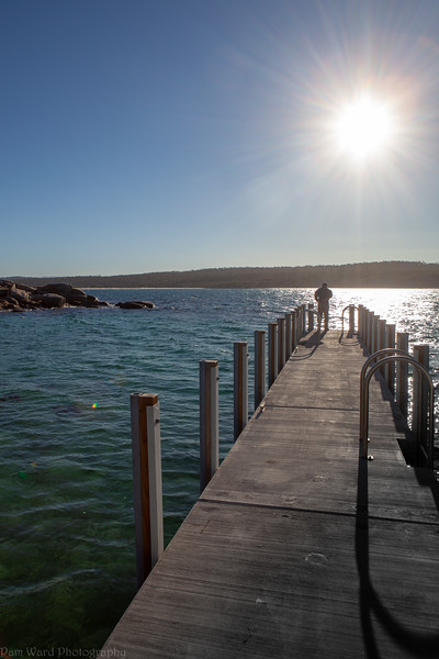 Birdport Tasmania