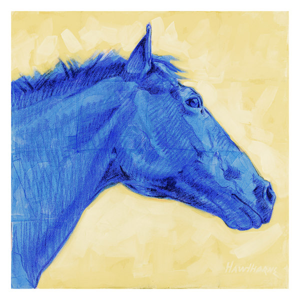 blue horse - profile 2005