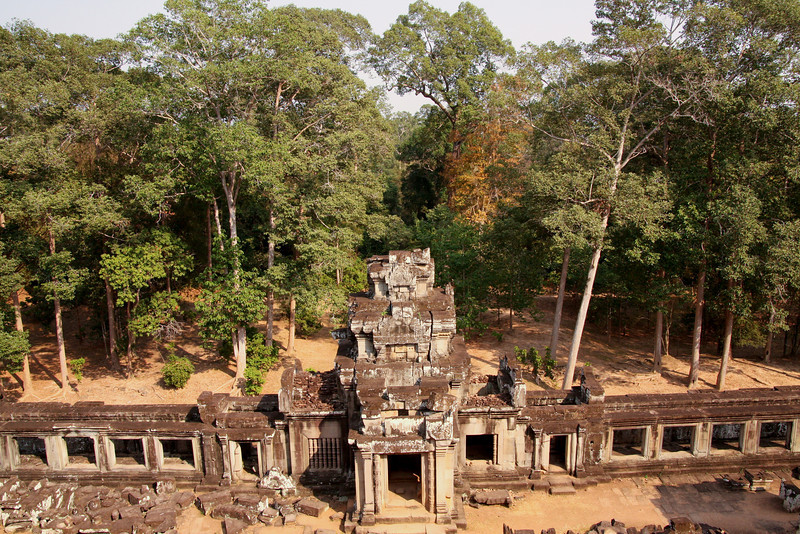 Ruins in the forest. Angkor Wat, Cambodia.