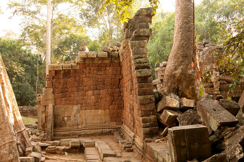 Ta Prohm temple in the Angkor Wat complex