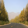 A scenic road in rural Ningxia, western China