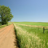Scenic grasslands in North Dakota
