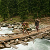Gujjar children carry firewood across an exciting bridge in Kashmir