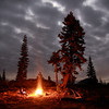 Enjoying a huge campfire under the light of the full moon in California's Sierra Nevada
