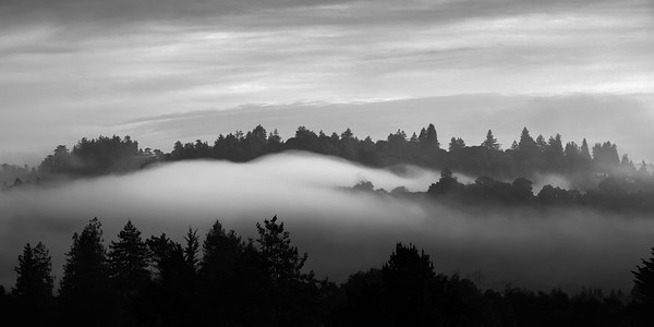 Morning fog in the Soquel Hills