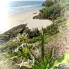 Whites Beach