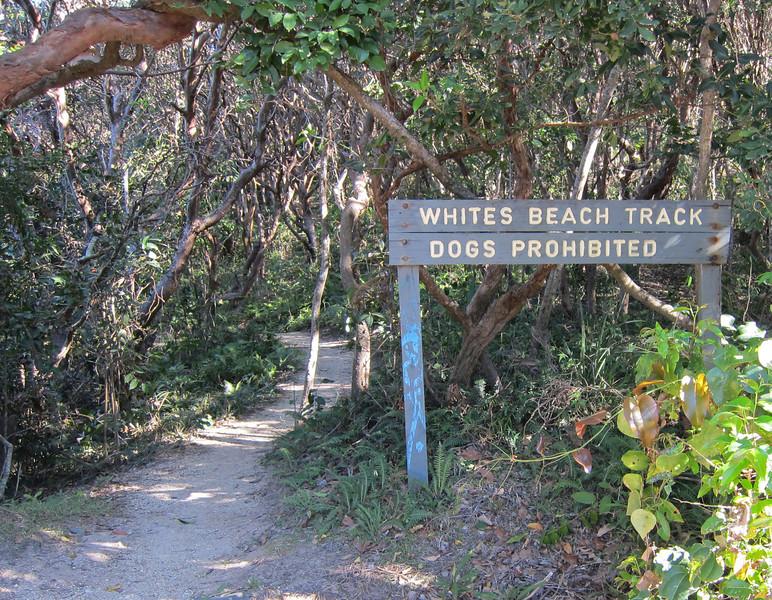 Whites Beach sign