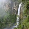 Purlingbrook Falls, Springbrook, Queensland.