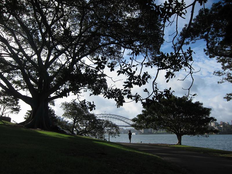 Mrs Macquaire's Chair, Sydney Australia.