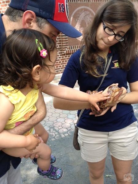Weissfest 2014 - Staten Island Zoo 5.jpg