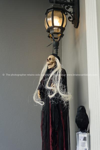 Halloween at 6d.