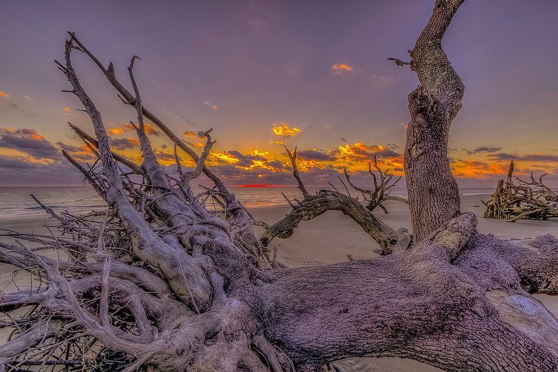 Sunrise over Driftwood