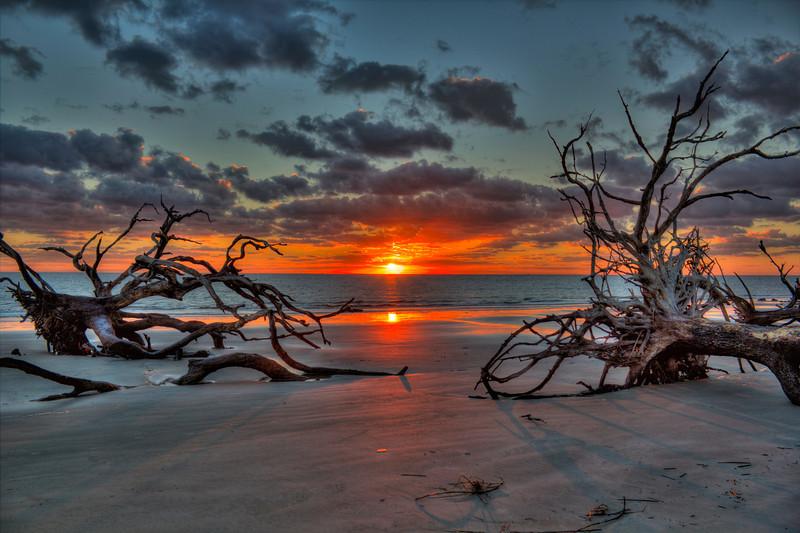 Sunrise Between Two Fallen Trees