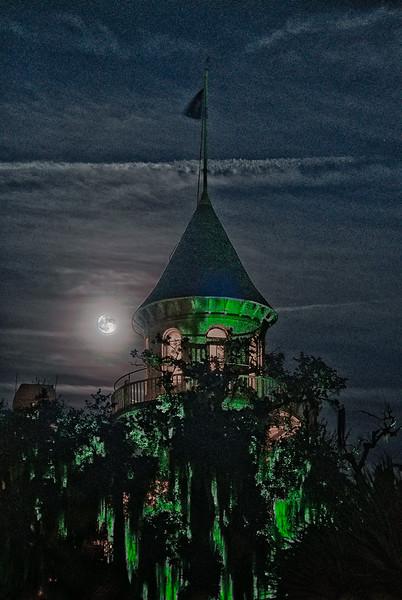 Moon with Green Beard Tree