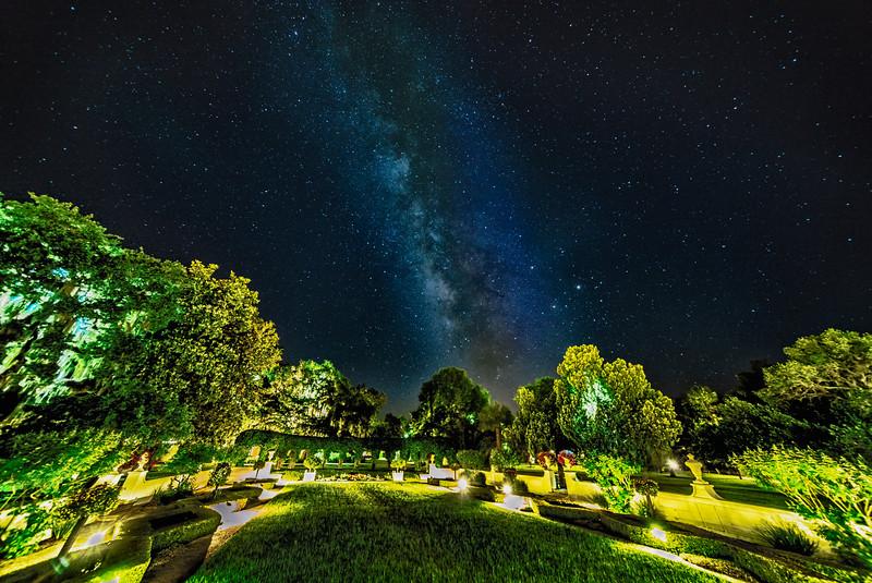 Wedding Garden Milky Way