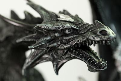 Dragon-20121115-09