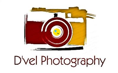 D'Vel Logo-2