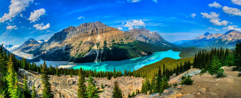 Peyto Lake and Mistaya Mountain