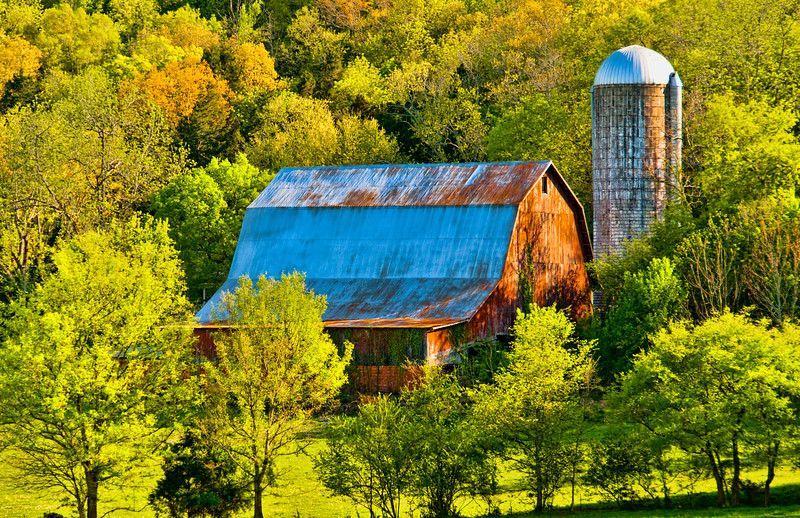 Barn and Silo in Pasture