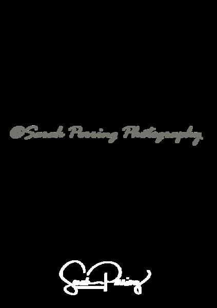 Large copyright image
