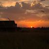 6  G Sunset Sun and Barn