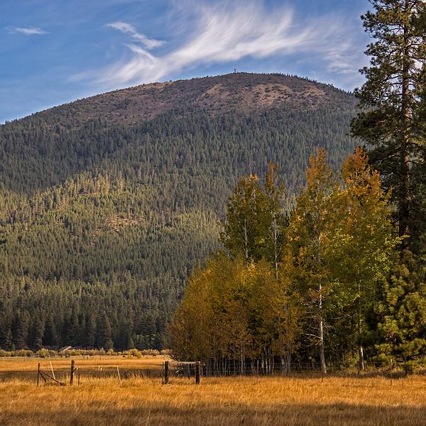 Fall-Aspens-Black-Butte_KateThomasKeown_DSC3205