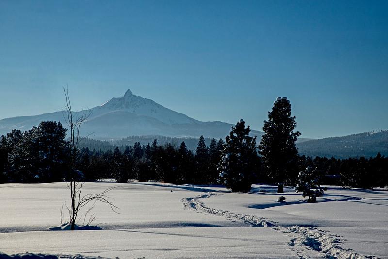 BBR_MtW-SnowyTracks_KateThomasKeown_DSC7428
