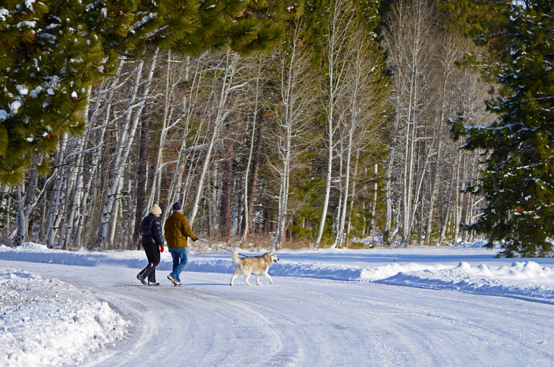 walking-in-a-winter-wonderland-at-BBR-KateThomasKeown12-12_DSC2521 copy