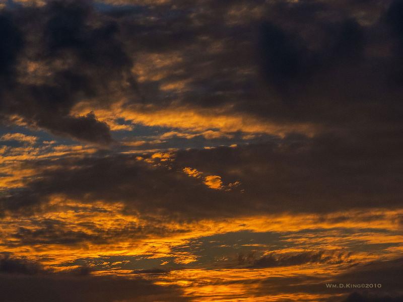 """""""Salt Marsh Nature Center Sunrise"""""""