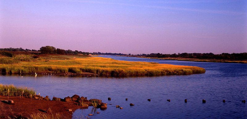 """Salt Marsh on Velvia"""