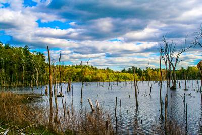 Stick Lake