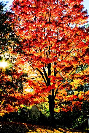 Massachusetts, USA