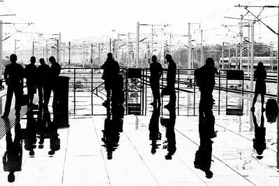 Shanghai Silhouettes