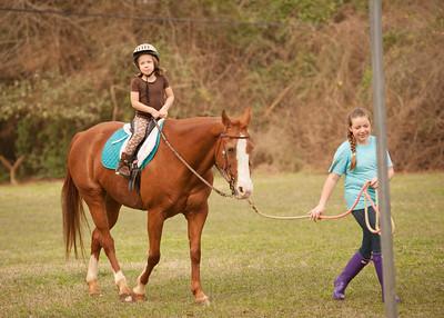Horse Fun 13