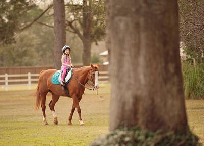 Horse Fun 04