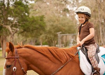 Horse Fun 07