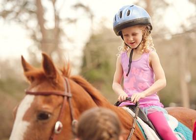 Horse Fun 02