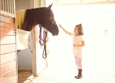 Horse Fun 18